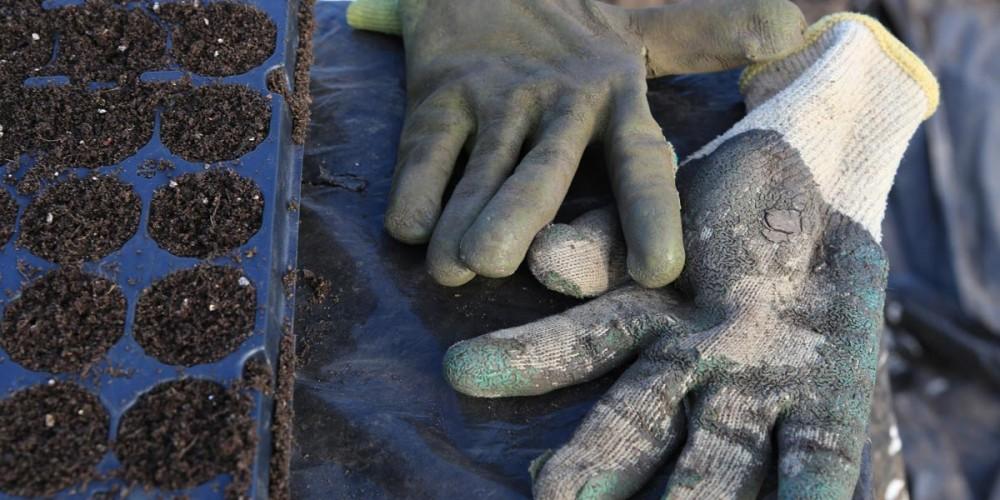 wearefarmers-gloves