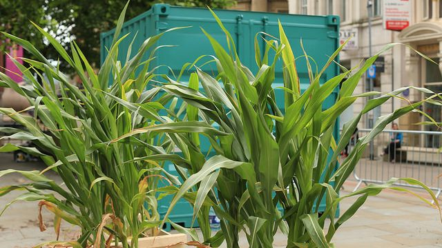 FarmLab container at Allotment of the Future, 2016